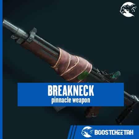 Breakneck (Auto Rifle)