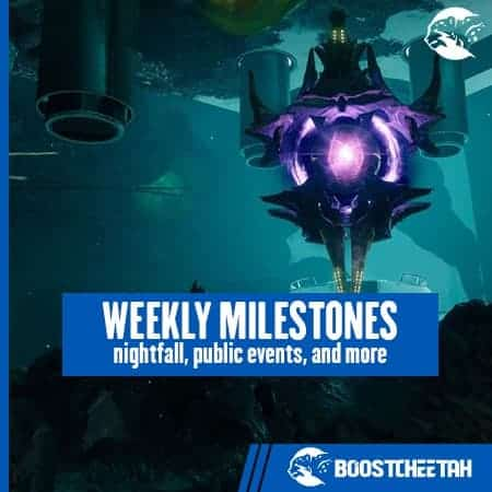 Daily and Weekly Milestones